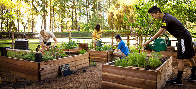 Residents of the Sustainable Living Community at UCLA can participate in projects such as the community garden run by the student group E3: Ecology, Economy, Equity.