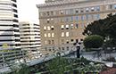 Franklin rooftop garden