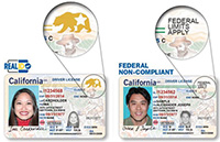 REAL ID and non-compliant ID