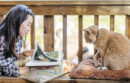 Girl reading with a cat